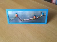 3 ijsvogels blauwe lijst 16-03