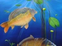 2-karpers-onderwater-lelies